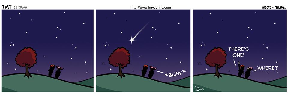 803 – Blink