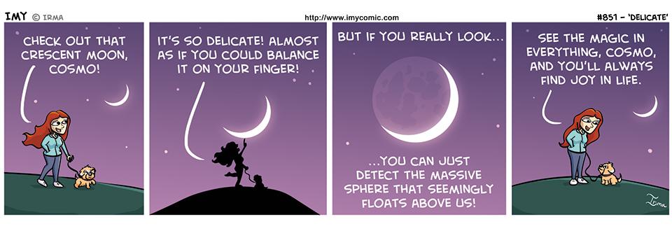 851 – Delicate